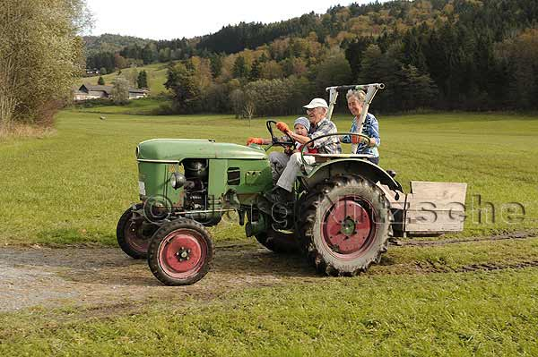 Bergen, a municipality in the Upper Bavarian district of Traunstein - When the grandfather drives with the grandson tractor.