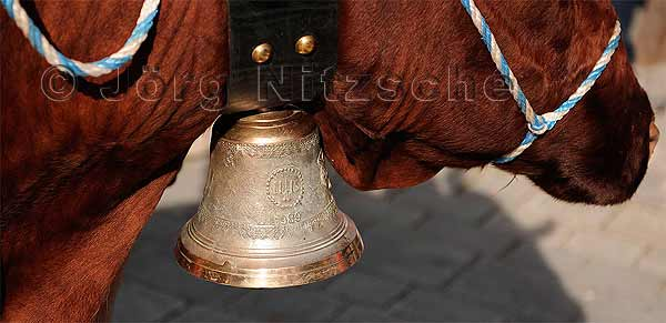 The famous cowbells, which are always given within the peasant families to the next younger generation.